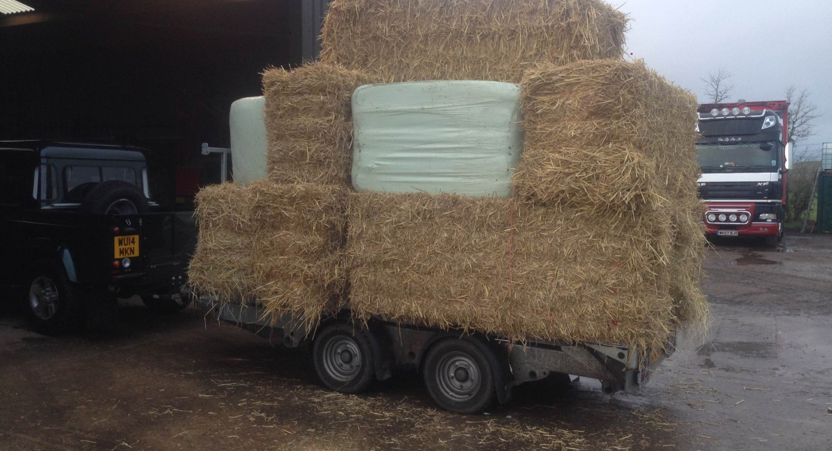Harris Croft Haylage | Haylage Supplier In Wiltshire | Hay For Sale Wiltshire
